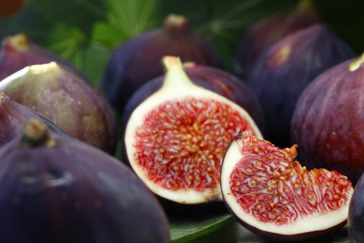 Fig sponge puddings